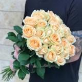 Роза чайно-гибридная Peach Avalange (1 саженец) описание, отзывы, характеристики